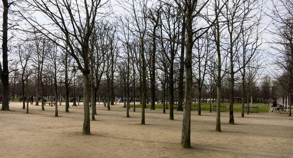 070315_lineharbak_snaps_Paris05