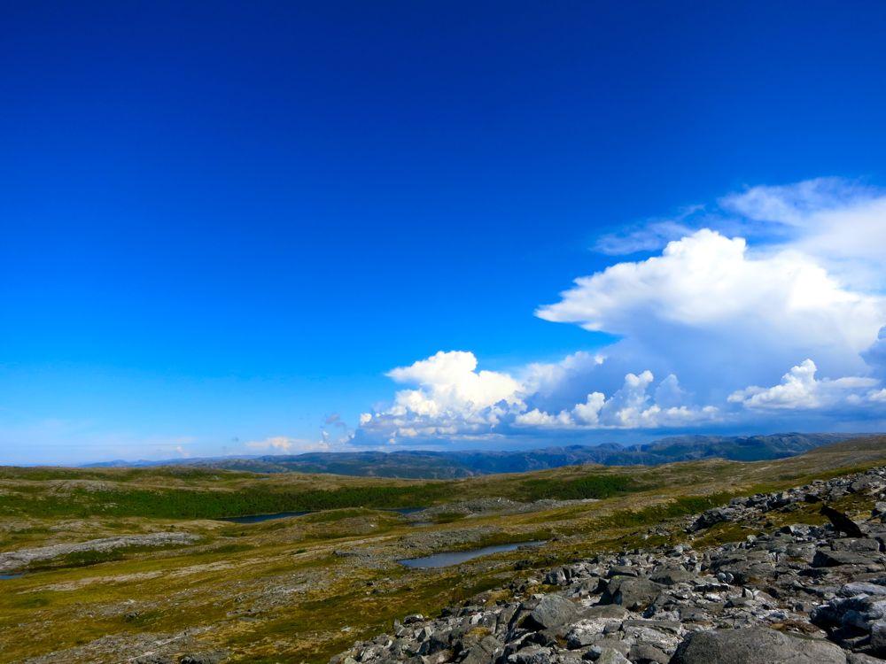 Harbaksfjellet_juni2012_LineHarbak2