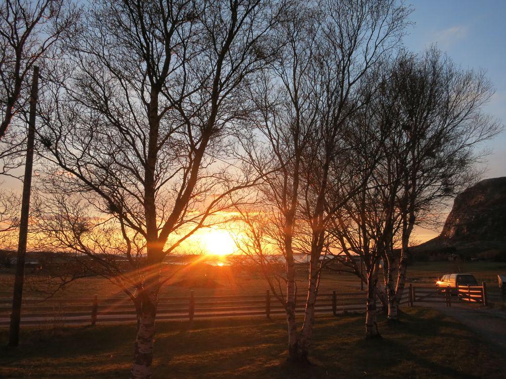 250416_lineharbak_sunset5